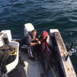 Reader E-Mail: 400-Pound Bluefin on Spinning Gear