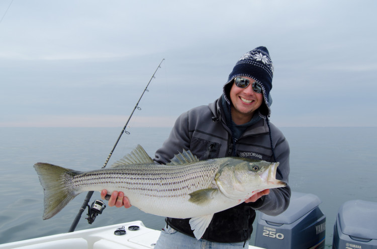 Huge schools of bunker have kept the stripers around South Jersey despite frigid conditions.