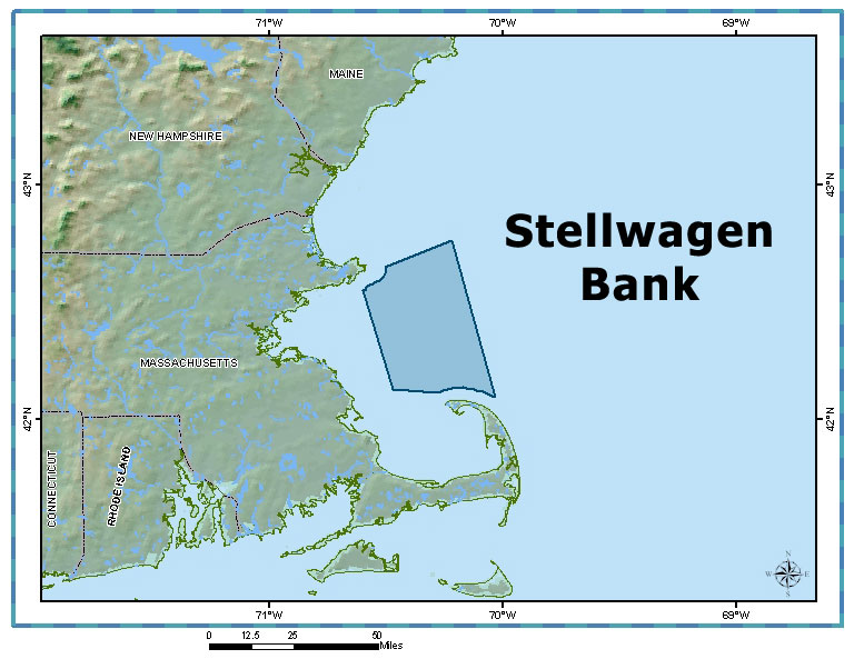 Fisherman speak out about stellwagen bank closure on the for Public fishing areas near me