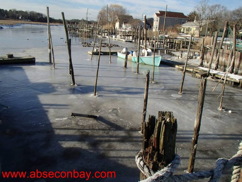 New jersey fishing report for 2 26 2015 on the water for New jersey fishing reports