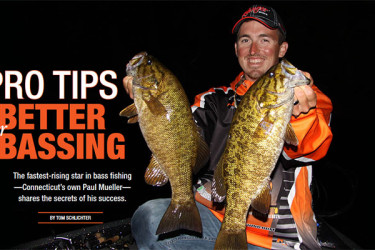 Tips for better bassing