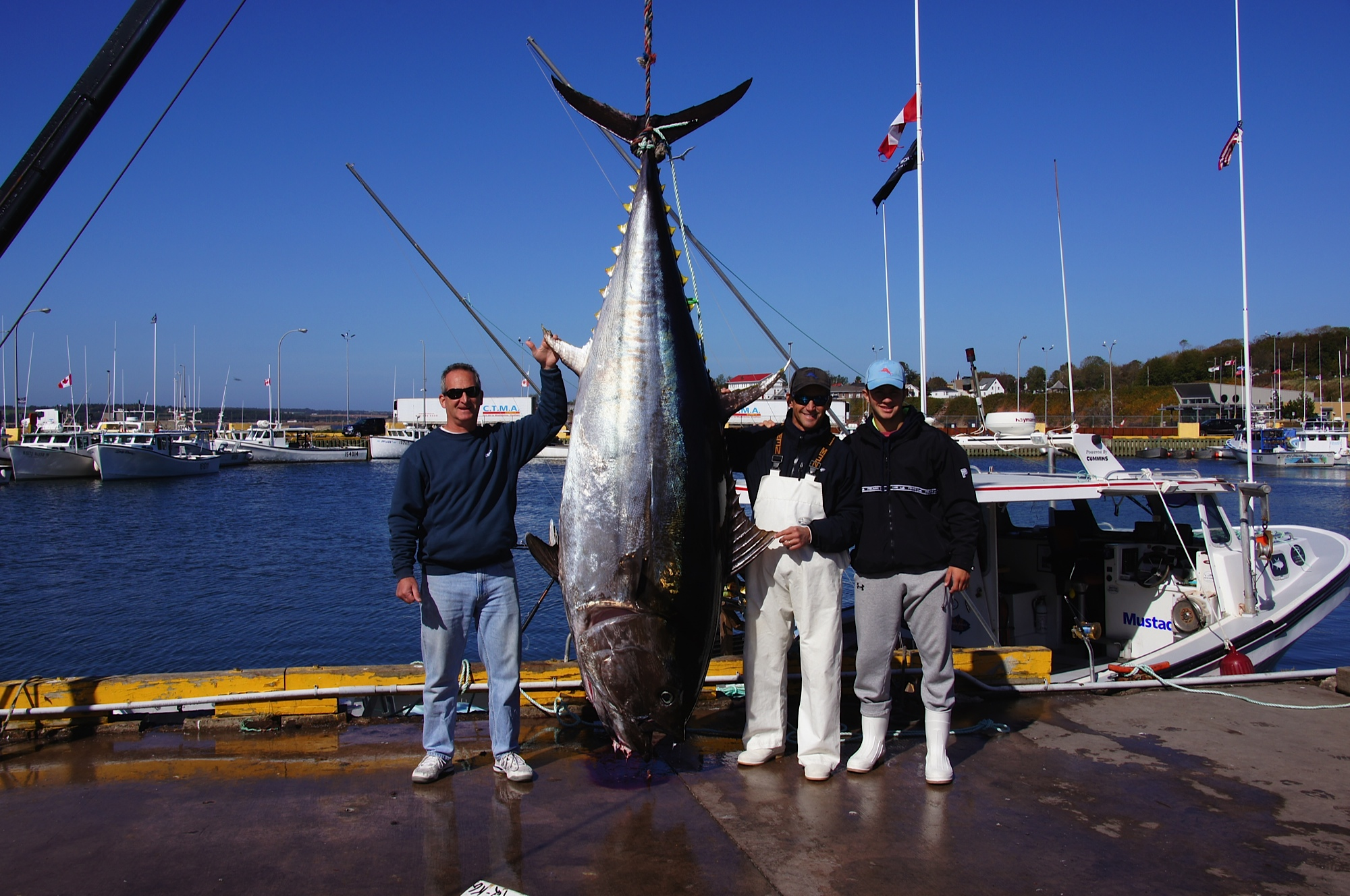 Otw reader submission prince edward island giant bluefin for Tuna fishing video