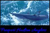 Freeport Hudson Anglers