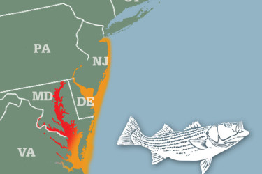 2015-04-09 migration map
