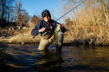 Bass are getting active in shallow ponds around Cape Cod.