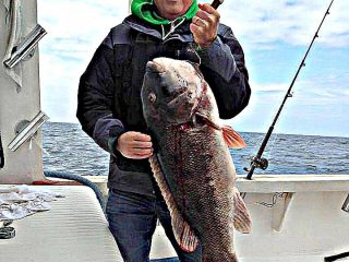 In this photo, posted on the Fishin' Fever Sportfishing Facebook page, angler Frank LaMorte holds the 25.37-pound blackfish NJ state record.