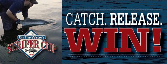Striper Cup Catch Release Eblast Ad