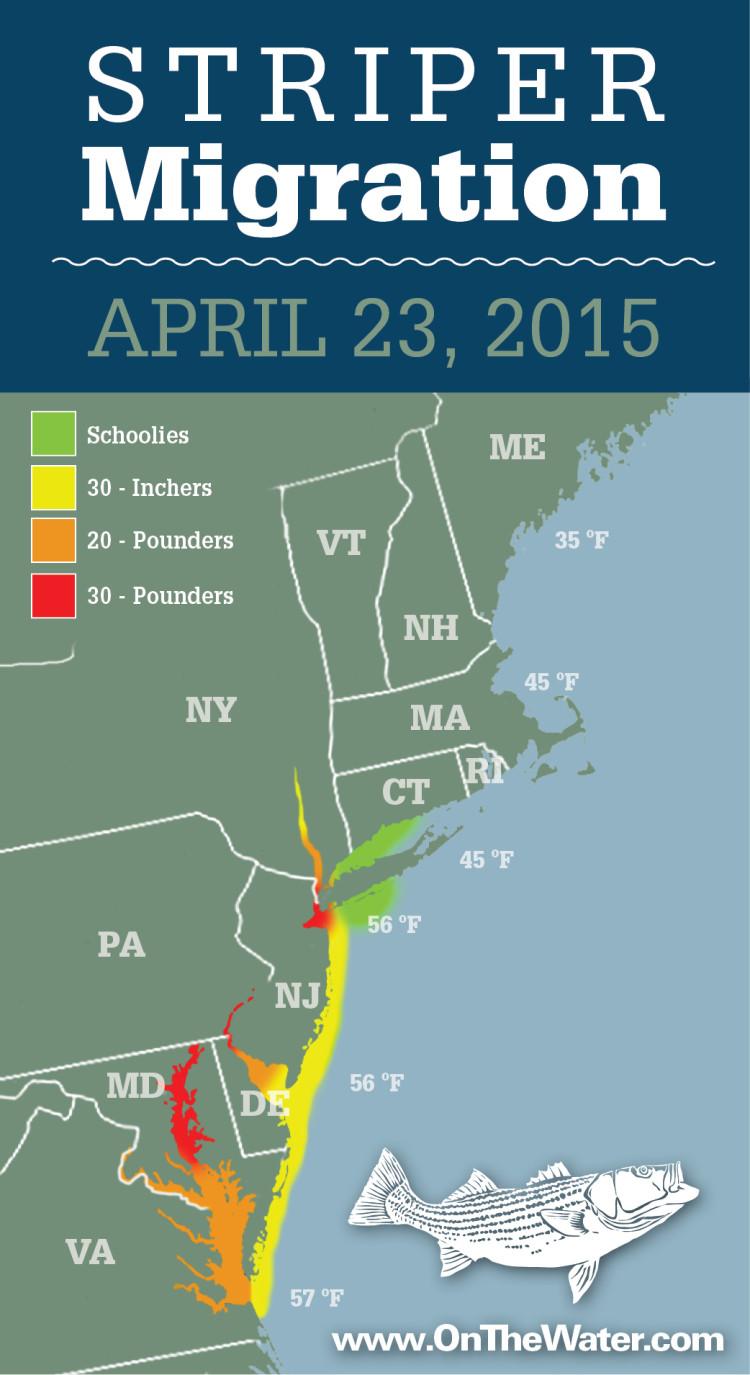 Striper migration map april 23 2015 on the water for Delaware river striper fishing