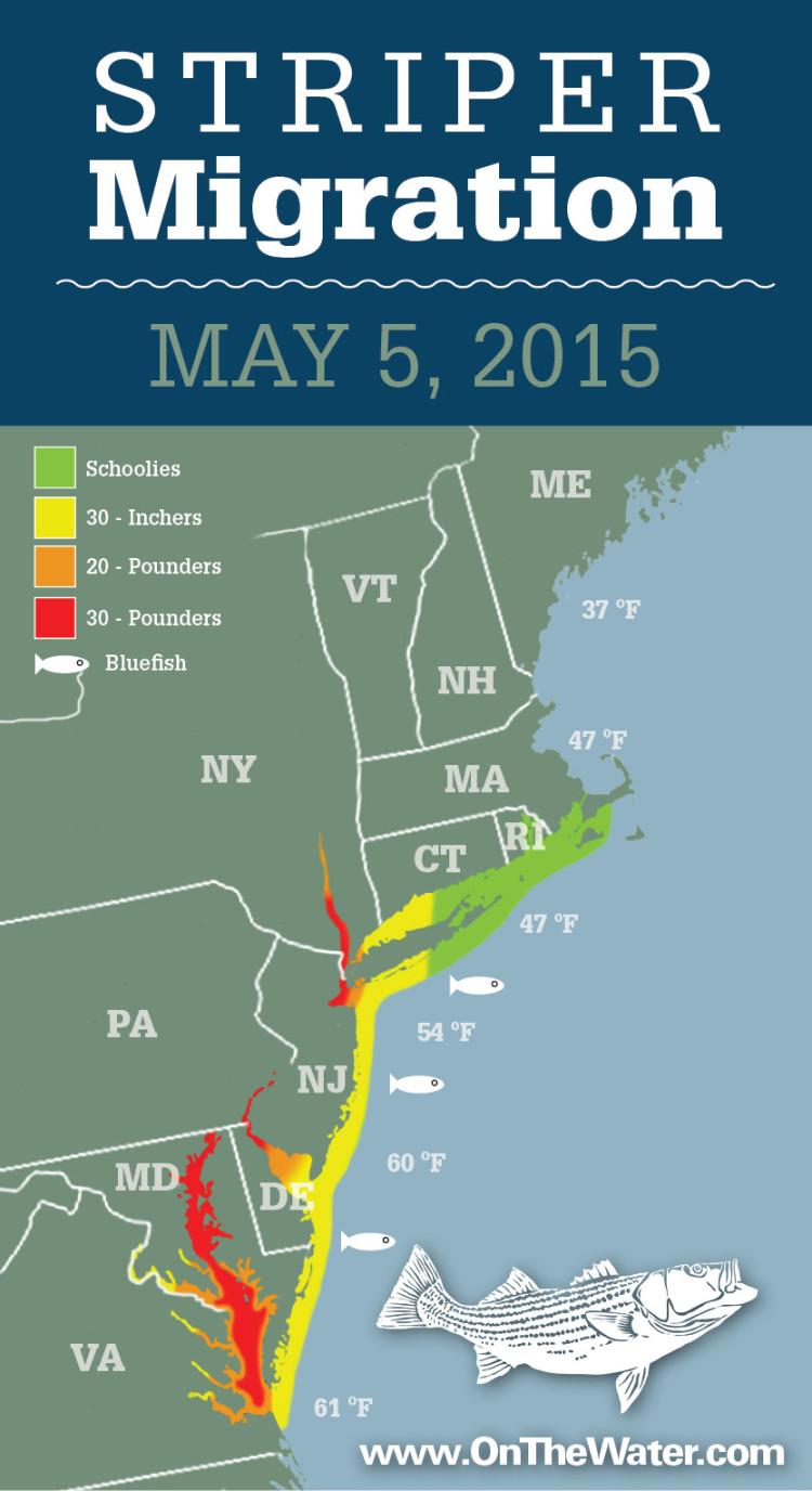 Striper Migration Map 2015-05-05
