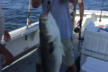Northern new jersey fishing reports for New jersey fishing reports
