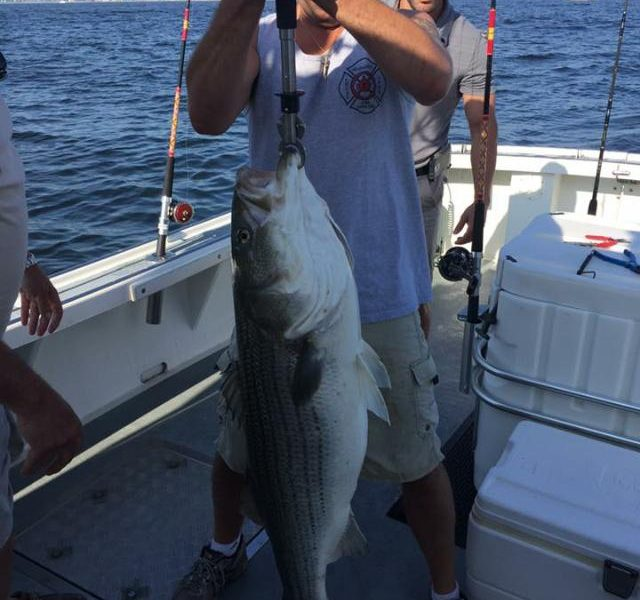 Northern new jersey fishing report june 18 2015 on for New jersey fishing reports