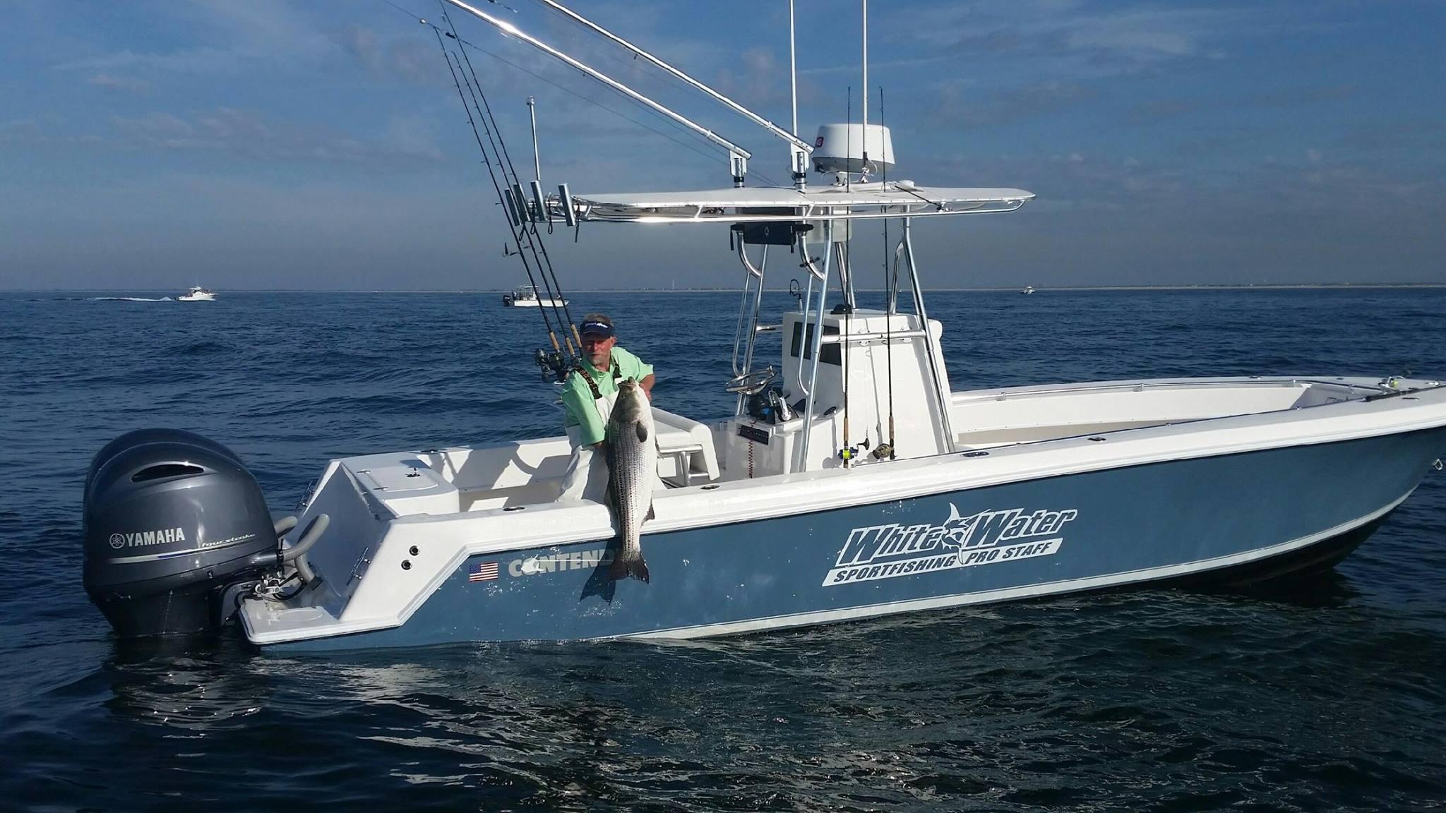 Long island new york fishing report june 18 2015 on for Fishing reports long island
