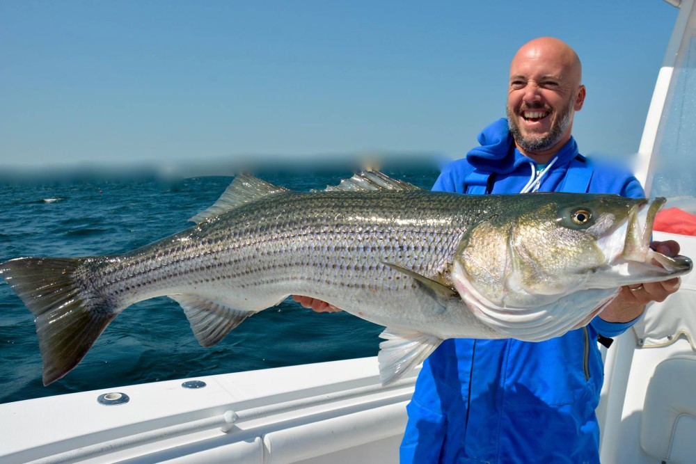 Video topwater striper strikes on the water for Nj freshwater fishing license