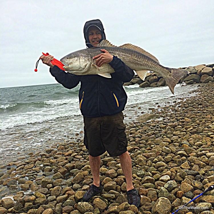 Cape Cod Red Drum