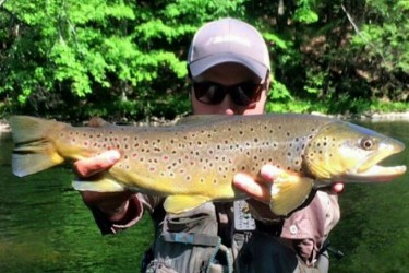 Wade Schools with a gorgeous Farmington River brown.