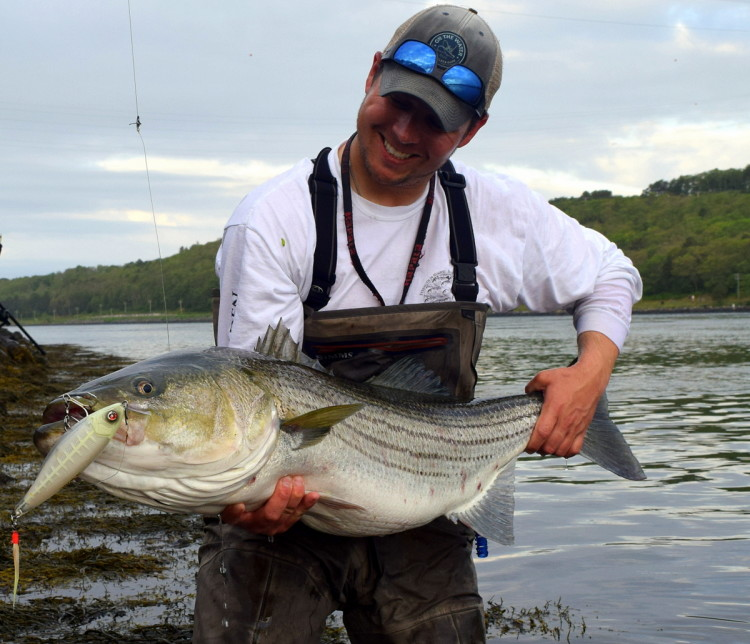 2018 cape cod canal cheat sheet on the water for Striper fishing cape cod