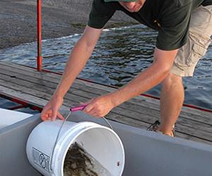 Hackettstown State Fish Hatchery