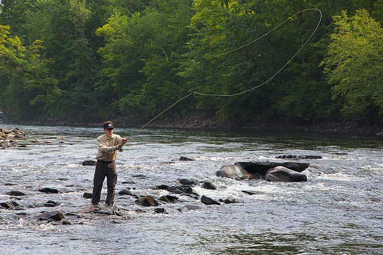 fly fishing new york - photo #4