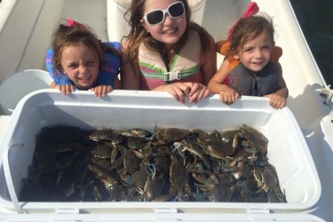 Crabbing is excellent according to Sea Isle Bait and Tackle.