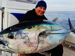 Kevin Pawsey with a giant bluefin caught off of Truro, MA