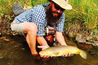 On a recent trip to Pine Creek, Scott Timcheck caught this beautiful Brown Trout