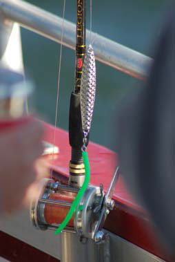 Stock up on diamond jigs with a variety of tube colors.