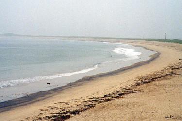 Naptree Point