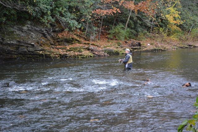 Pennsylvania fishing report october 29 2015 on the water for Fishing in pennsylvania