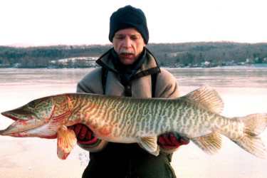 record tiger muskie massachusetts