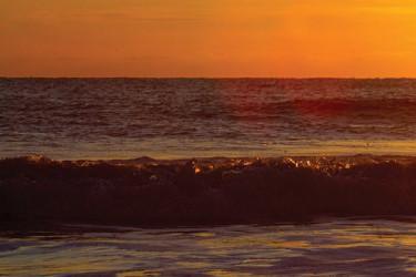 Striper Gold Sunset