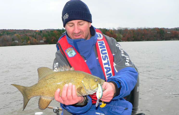 When water temperatures cool and the weeds start breaking up in the fall, big smallmouth can be found roaming shallow water and will fall prey to wide-wobbling crankbaits worked slowly through the vegetation.