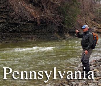 Pennsylvania fishing reports for Pa fishing report