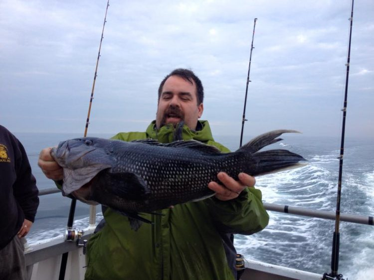 This 8-pound black sea bass was caught aboard the Brooklyn VI on Saturday while fishing in 175 feet of water.