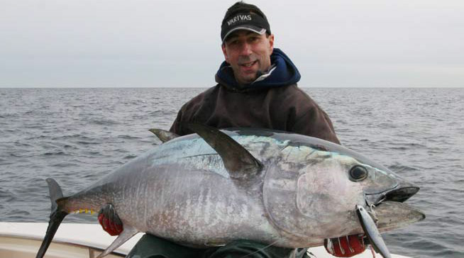 Stickbait tuna on the water for Celtic quest fishing port jefferson ny