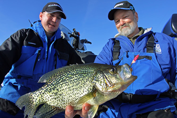 Anglers admiring crappie