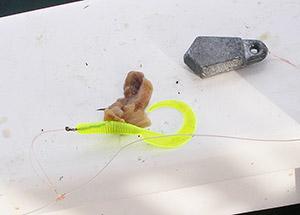 A standard cod bait-fishing rig