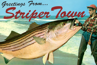 Greetings From Striper Town