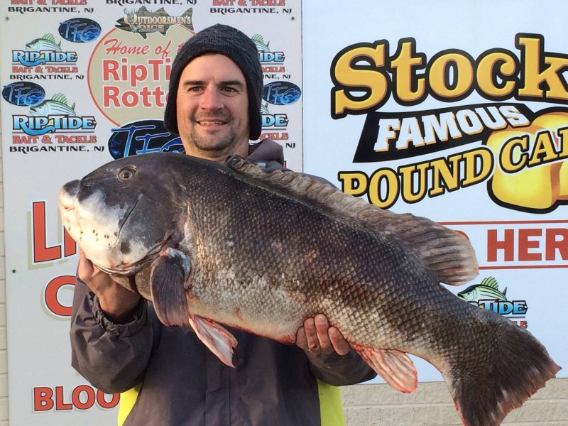 Video 23 Pound Tog Caught In New Jersey