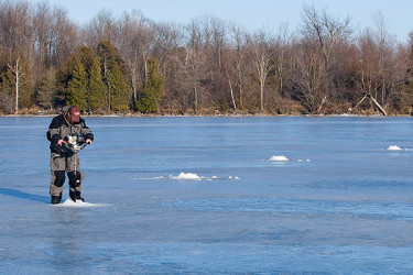 sight fishing on ice