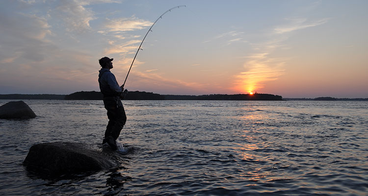 Peak And Slack Tides For Big Stripers On The Water