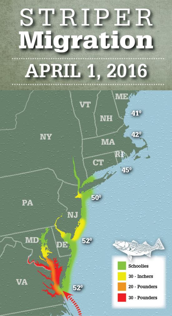 2016 Striper Migration Map Striper Migration Map