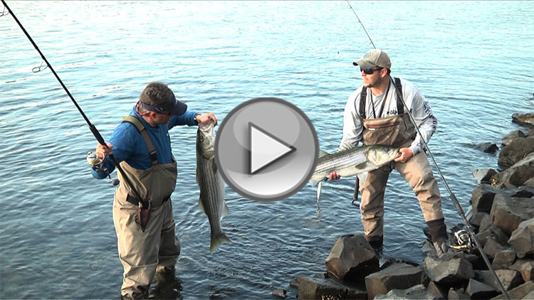 On the water s angling adventures presents cape cod canal for Cape cod canal fishing report