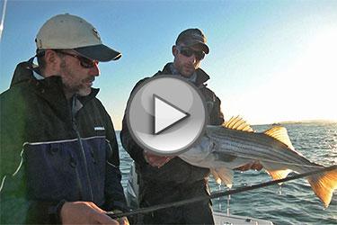 fishersIsland-play