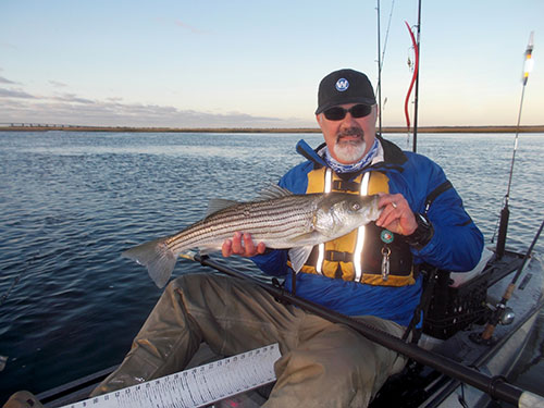 Tube-and-worm rigs seem to draw strikes when all other lures and tactics fail.
