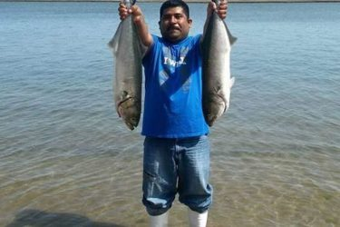 The bluefish have hit Atlantic City in force reported One Stop Bait and Tackle.