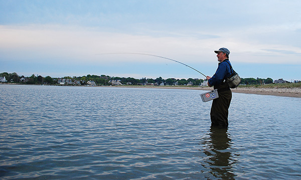 A six- to eight-weight fly rod with a floating weight-forward fly line is the ideal setup for targeting spring schoolies in shallow water.