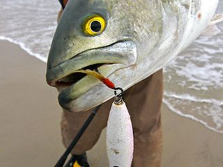 Popping plugs like the Super Strike Little Neck Popper are spring bluefish killers.