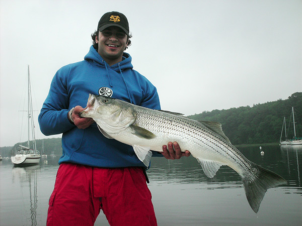 spring striper that was caught well up inside a mooring field.