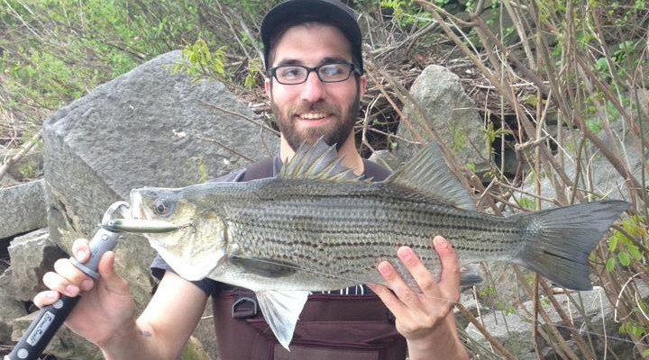 Philadelphia s spring run on the water for Delaware river striper fishing