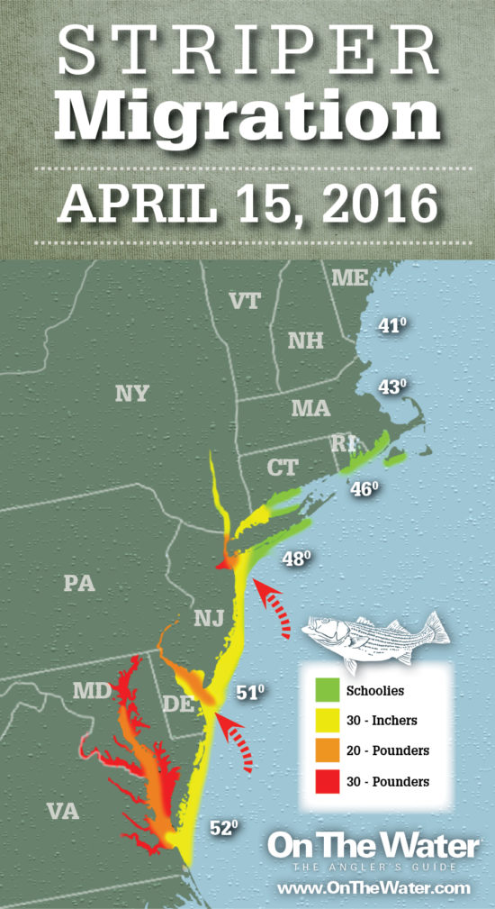 Striper migration map april 15 2016 on the water for Best striper fishing spot in ri